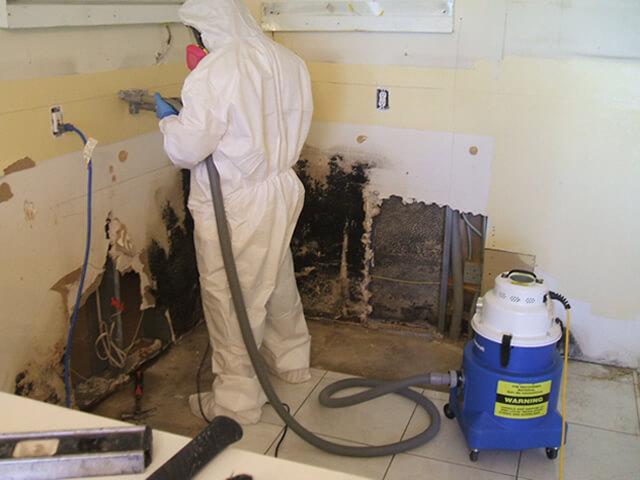 Proper Mold Remediation Methods