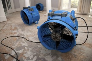Air Movers by Element Restoration
